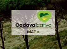 Map of Cadaval